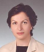 Öğr.Gör.Dr. EMİNE BALCI