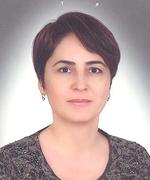 Prof.Dr. ÜMİT KARADENİZ
