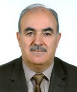 Doç.Dr. MEHMET MEMİŞ
